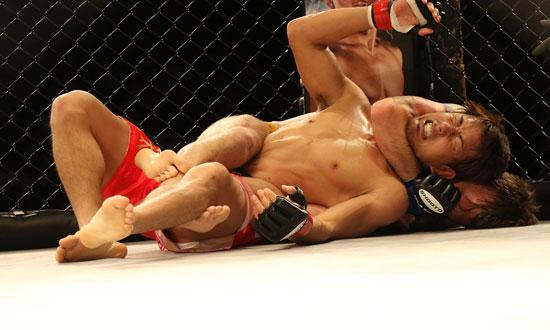 Postbild Fights och resultat Hur avgors vinnaren av en fight - Fights och resultat