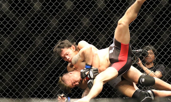Postbild Fights och resultat Var kan jag hitta resultaten pa en fight - Fights och resultat