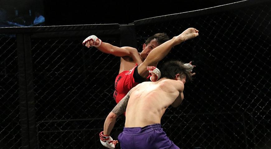 Utvalda bilder Fights och resultat - Fights och resultat